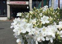 ☆ふらりの白つつじも開花しました:画像
