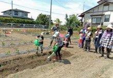 ☆野菜も子どもたちも元気いっぱいです〜畑の楽耕(がっこう):画像