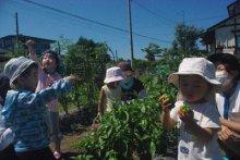 ☆共育セミナーなかよしくらぶ〜8月、9月の活動:画像
