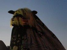 【第28回ながい黒獅子まつり−巨四王神社(川原沢)−】:画像