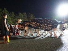 【第29回ながい黒獅子まつり−葉山神社(白兎)−】:画像
