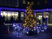 【かわべリングクリスマス 点灯式】:画像