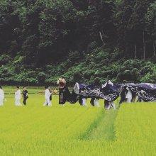 日本人と宗教:画像