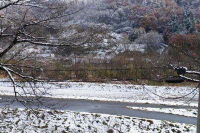 【初雪が降りました】:画像