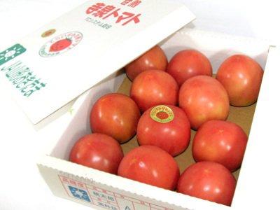 【長井のブランドトマト ≪寺泉トマト≫】:画像