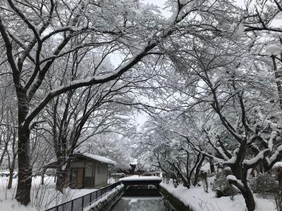 【雪の長井】:画像