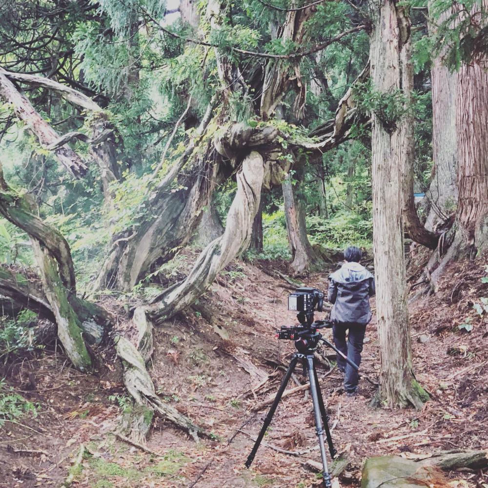 撮る人を撮る:画像