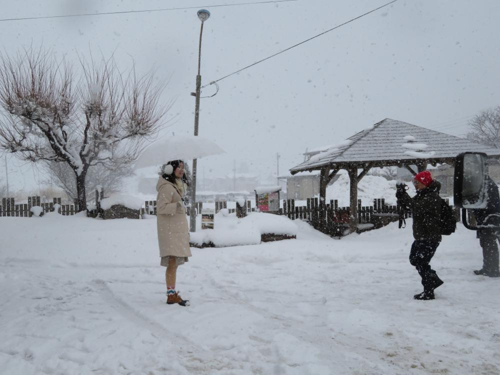 聖地巡礼には白い傘と・・・:画像