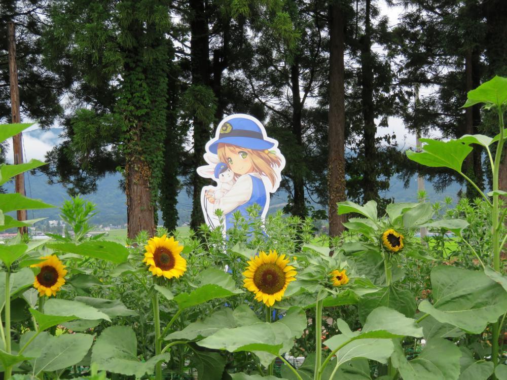 フラワーで花巡り:画像
