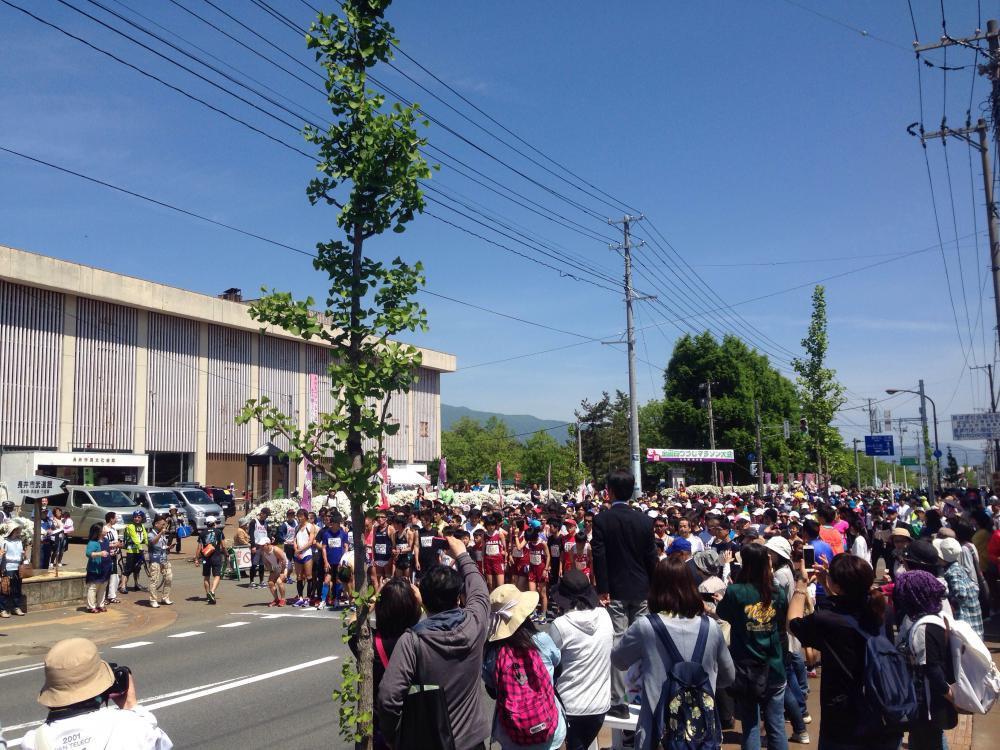 白つつじマラソン in長井市:画像