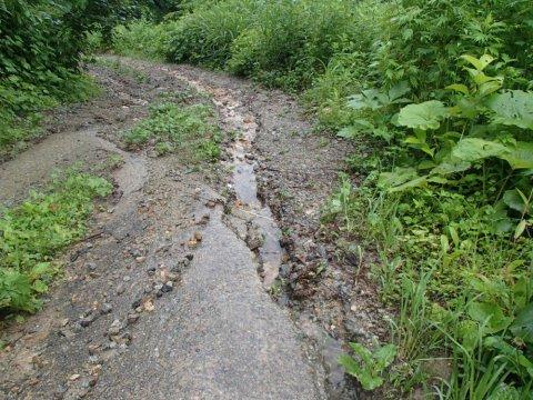 三階滝への林道 通行止めのお知らせ:画像